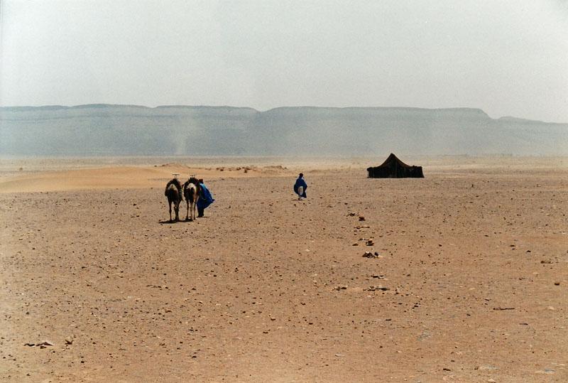 12. Traversée du désert