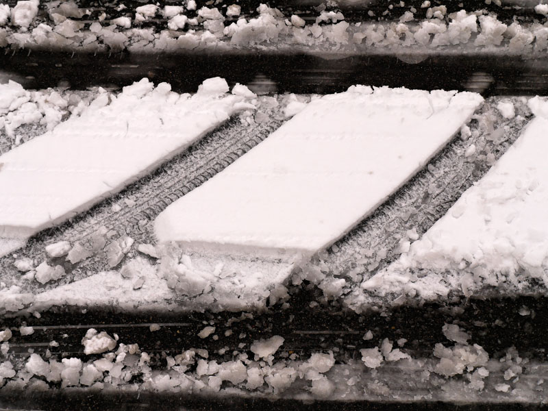 14. Sage neige