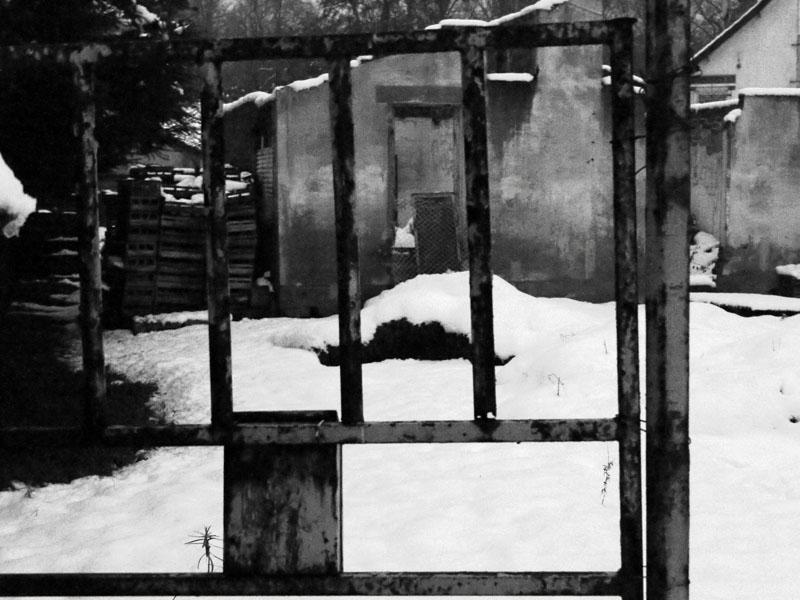 31b. Neige et grille